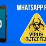 تحذير من تحميل تطبيق واتساب بلس وهذه هى الاسباب WhatsApp Plus