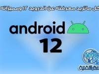 كل ما تريد معرفته عن اندرويد 12 Android ومميزاته وموعد إطلاقه
