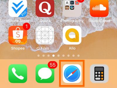 iPhone Dock Safari