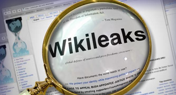 293373814-Wikileaks_6