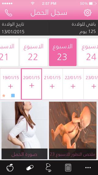 سجل الحمل