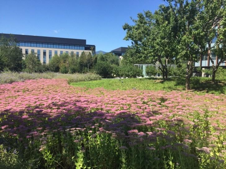 جانب من الحدائق داخل مجمع هواوي في بكين