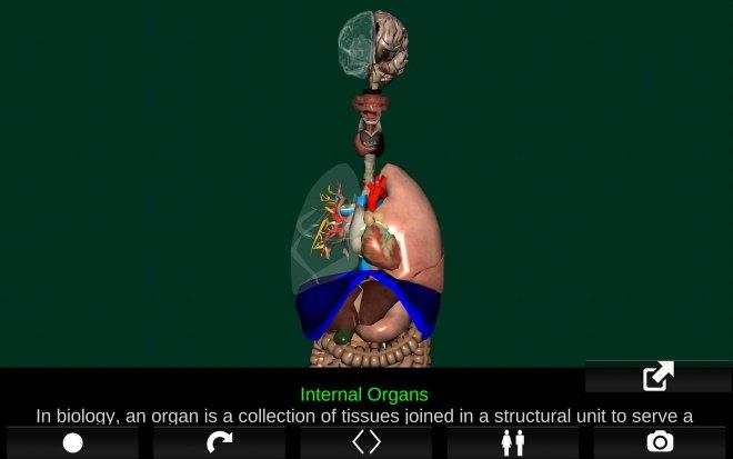 تطبيق Organs 3D يُقدّم نماذج ثلاثية الأبعاد لأجهزة جسم الإنسان مع شرح كل عضو