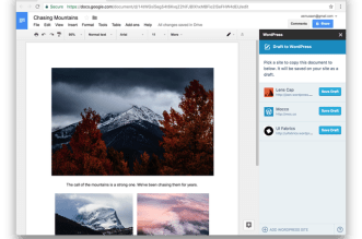 WordPress.com for Google Docs