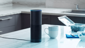 3065179-poster-p-1-what-amazon-has-learned-from-the-echo