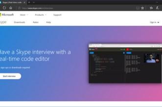 skype interview