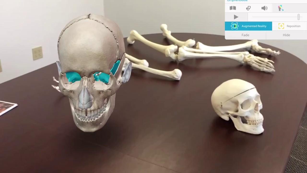Human Anatomy Atlas 2018 - مجموعة من تطبيقات الواقع المعزز احصل عليها الآن من أندرويد!