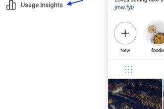 instagram Usage Insights