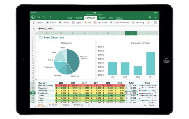Microsoft Office Excel voor ipad
