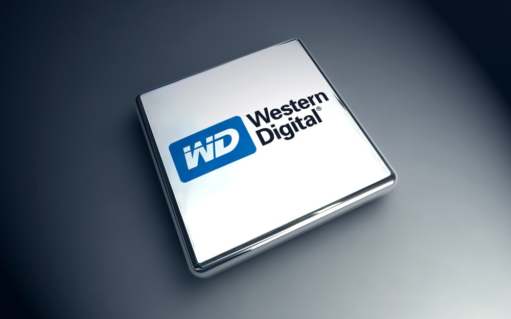 WD Financial Results