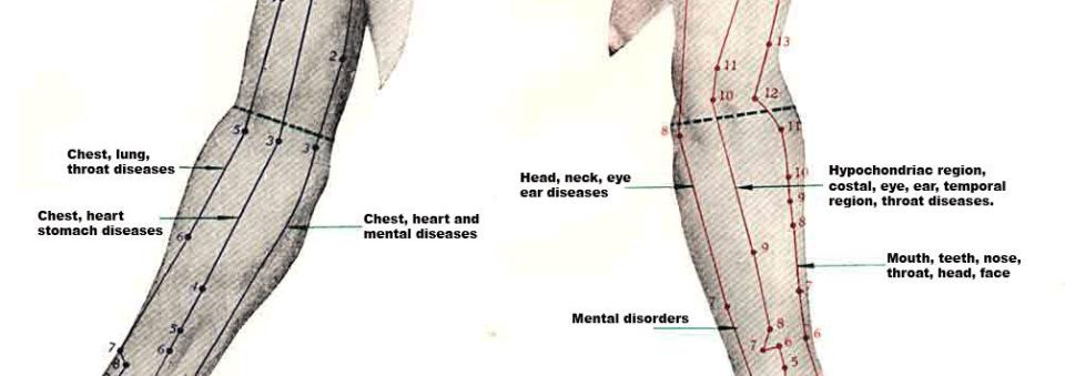 Elbow meridians
