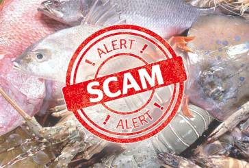 Seafood Scams On Facebook : How To Detect Them!