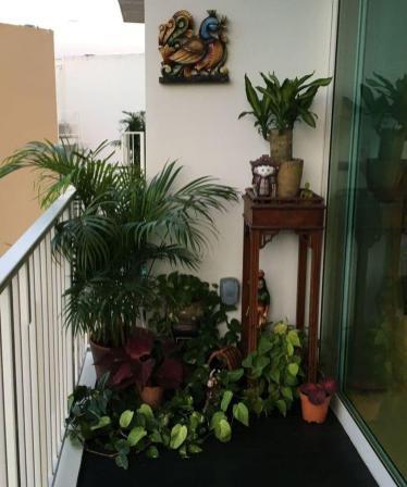 Balcony Ideas (16)