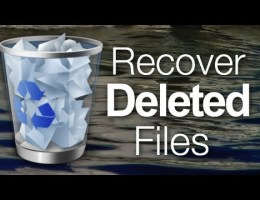 restore recycle bin deleted files