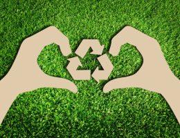 green eco friendly