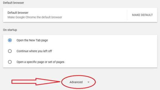 Google Chrome Advanced