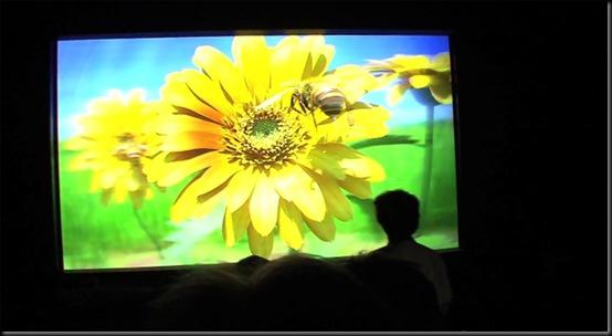Maior tela 3D do mundo tem 200 polegadas; Instituto Nacional de Informação e Comunicação do Japão e a marca JVC Kenwood, FULL HD, 3D