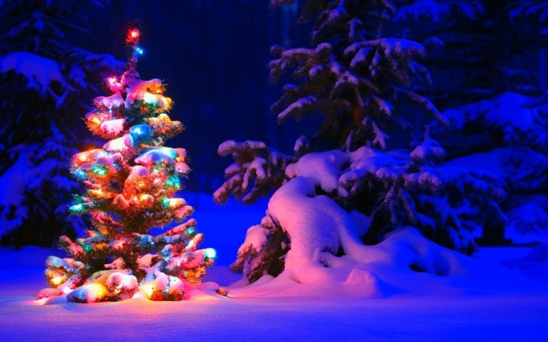 Snowy Christmas Tree with Lights