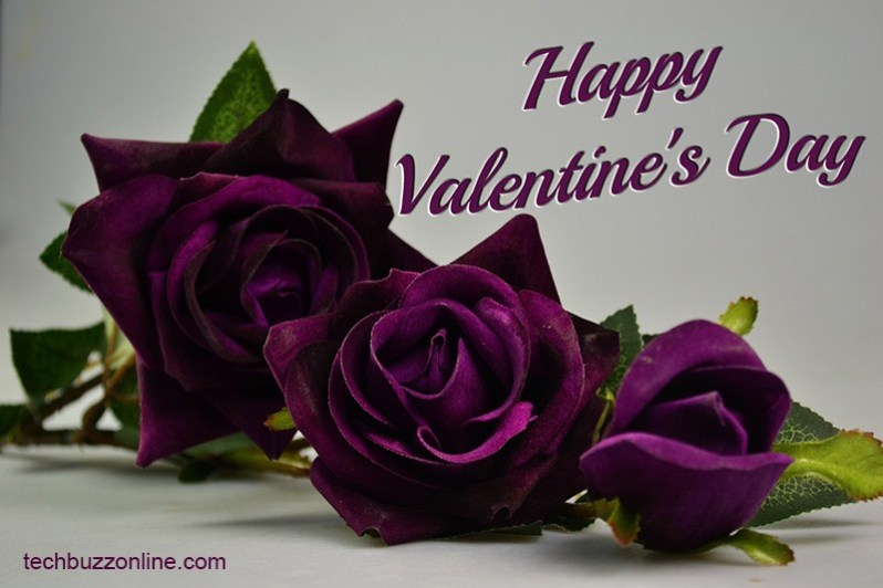 Happy Valentine's Day Greeting Card - 6