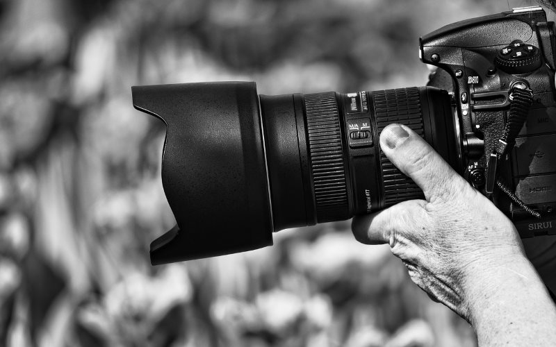 5 Things That Can Help You Establish Yourself as a Photography Expert