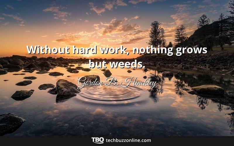 Motivational Quotes 13