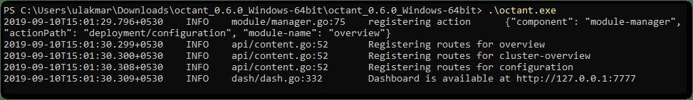 VMware Octant Started