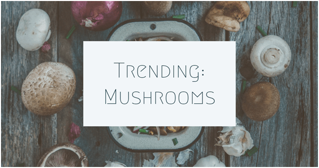 The Top 8 Content Marketing Trends for Online Mushroom Business