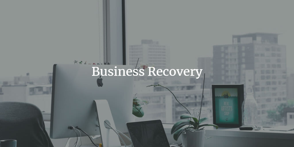 What is a Business Recovery Specialist and How do They Function?