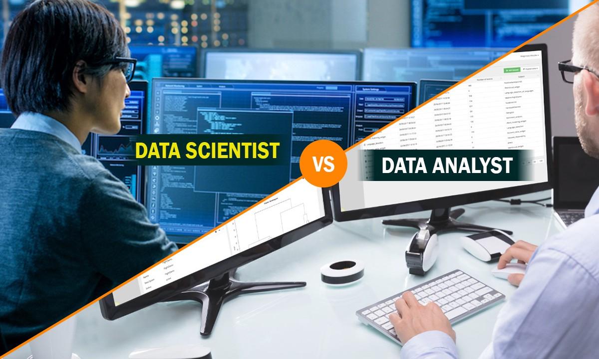Data analyst versus data scientist: Where do the differences lie?