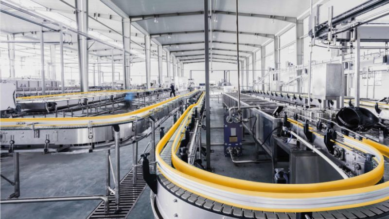 How to Extend the Life of Your Conveyor Belt System
