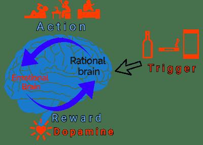 brain dopamine loop graphic