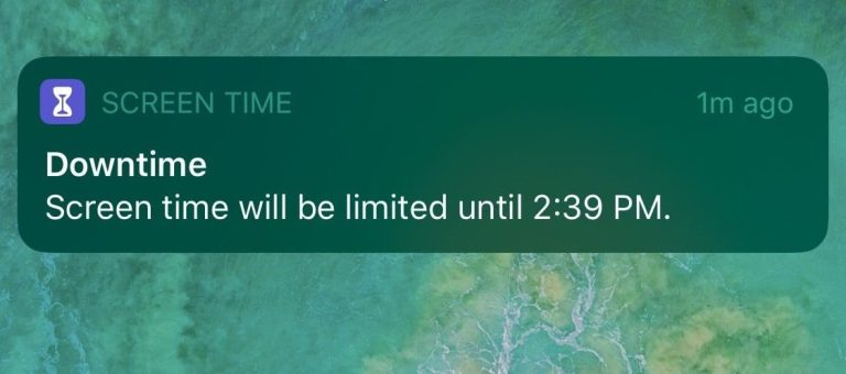 screen time downtime screenshot