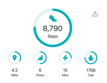 digital goals graphic fitbit example