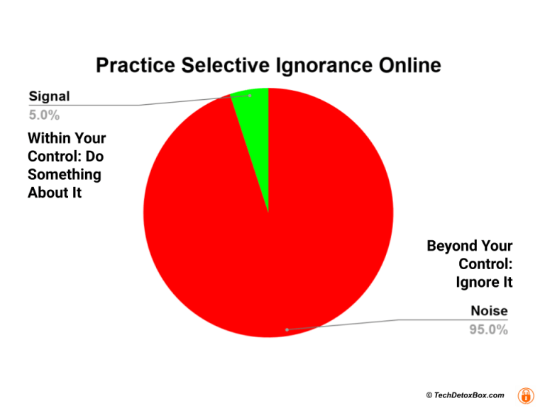 selective ignorance for digital wellbeing techdetoxbox.com