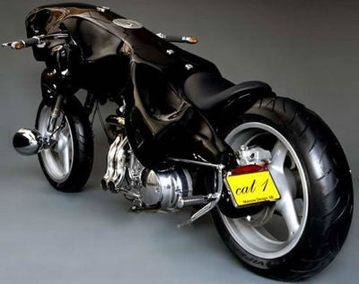 cat-bike2_MThBR_5784.jpg