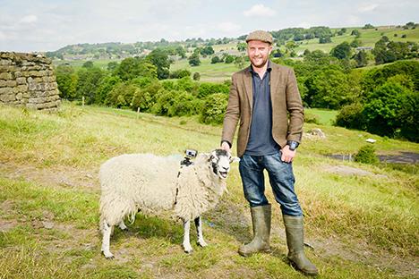 sheep2.png