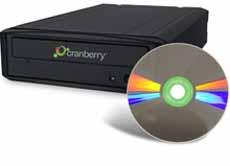 CranberryDiamonDisc.jpg