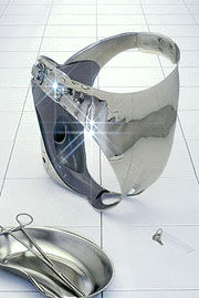 Genital-organ-chamber.jpg