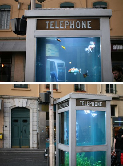 Phone-Booth-Aquarium.jpg