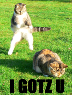 april-fools-lolcats.png