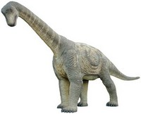 camarasaurus_small.jpg