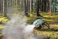 german-firefighting-bug.jpg