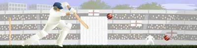 ragdoll-cricket.jpg