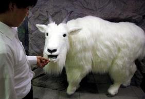robo-goat.jpg