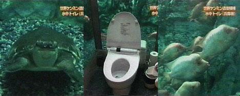 toilet-aquarium.jpg