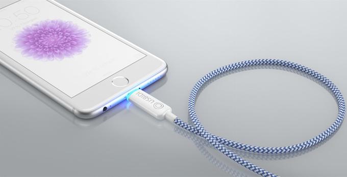 Bidi charger