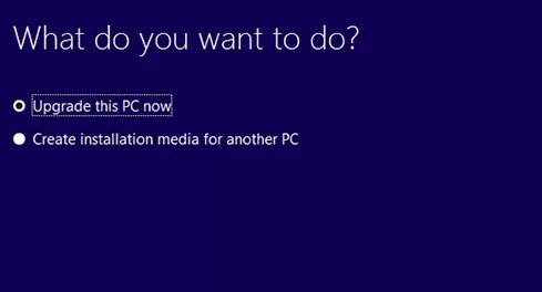 . Select 'Upgrade this PC now'