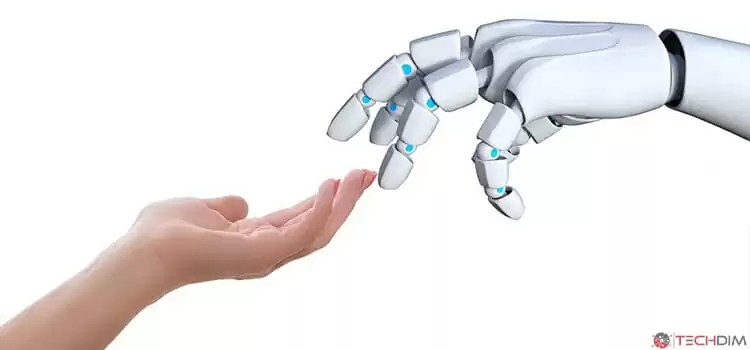 Startup in the Robotics Market