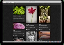 Shadzee.com Desktop image