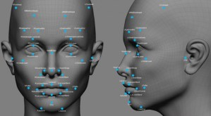 Reconhecimento facial online: Duas perspectivas distintas